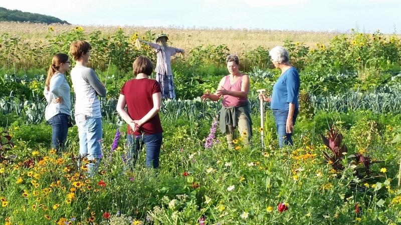 Saisongarten in Bauerbach - selber gärtnern und Glück